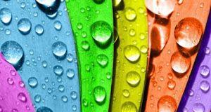 Виды водоэмульсионных красок: минеральная, силикатная, силиконовая, акриловая, латексная